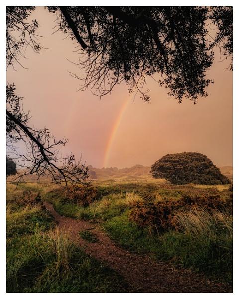 Rainbow by happysnapper