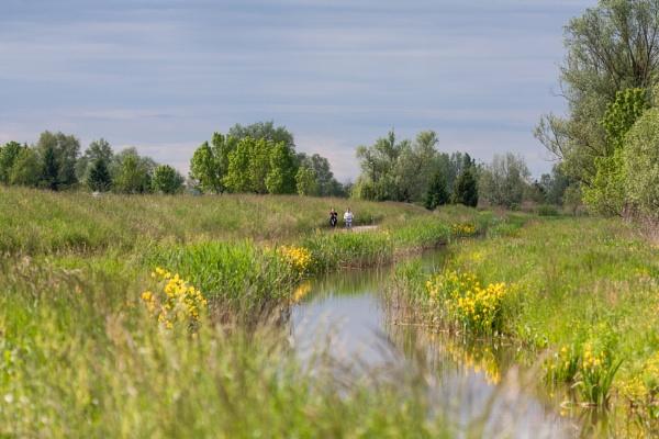 Running along the creek by drDinko