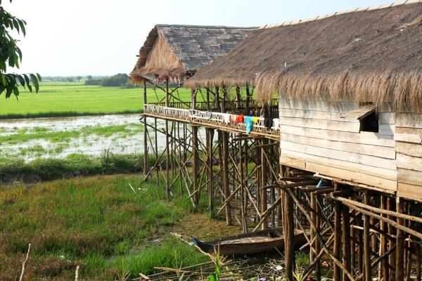 Stilts by mikekay