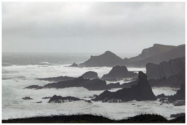 Wild Devon Atlantic coast by Janetdinah