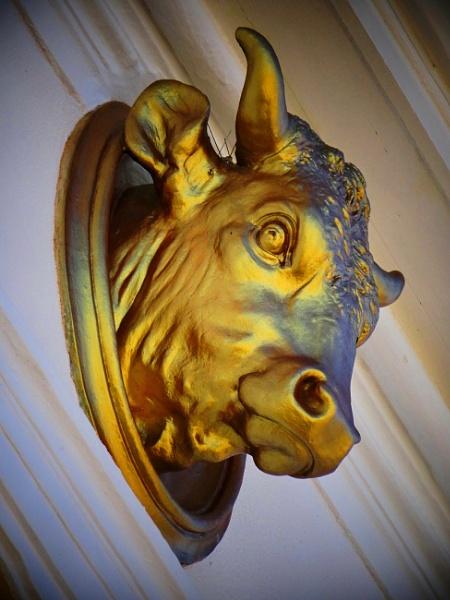 golden bull by elousteve