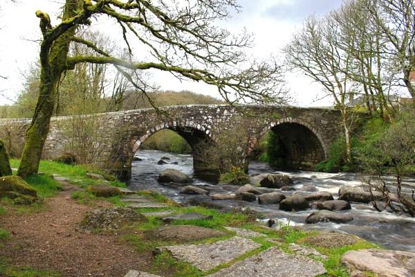 Bridge at Dartmeet by dflory