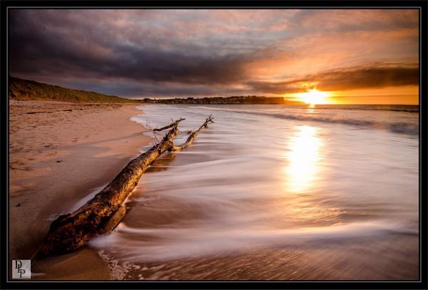 "\""Driftwood on the Strand\"" by DavidLaverty"
