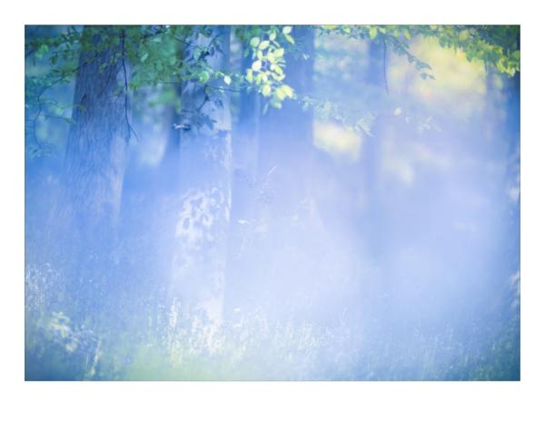 Dream in Pastel by gerainte1