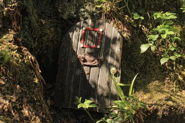 Knock, knock! by canoncarol
