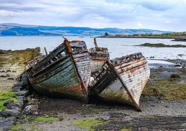 Dead Boats by DTM