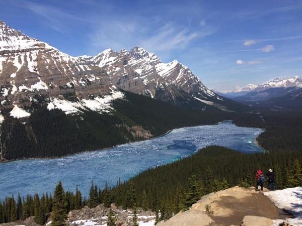 Peyto Lake Banff National Park Canada by topcatj
