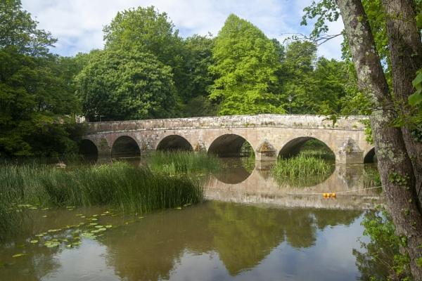 Bridge on the Stour by pledwith