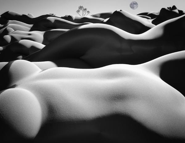 Desert Oasis by RLF