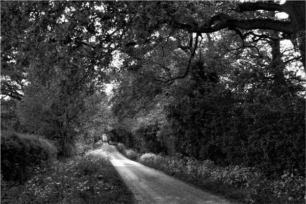Dark Lane by dark_lord