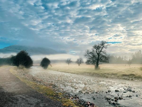Morning Mist by WeeGeordieLass