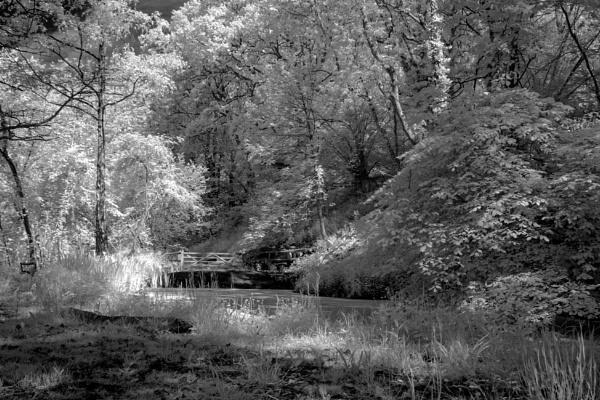 Infrared Pond by tralfamadorean