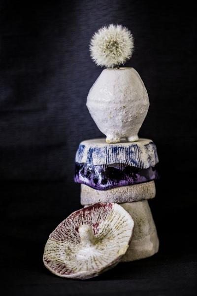 dandi topples mushroom cap... by estonian