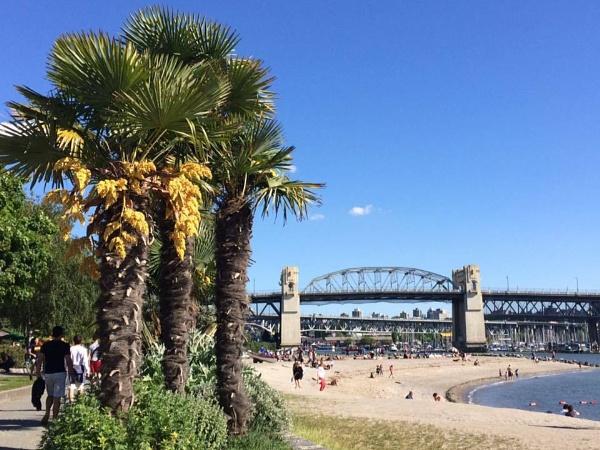 Sunset Beach, Burrard Bridge, Downtown Vancouver Canada by topcatj