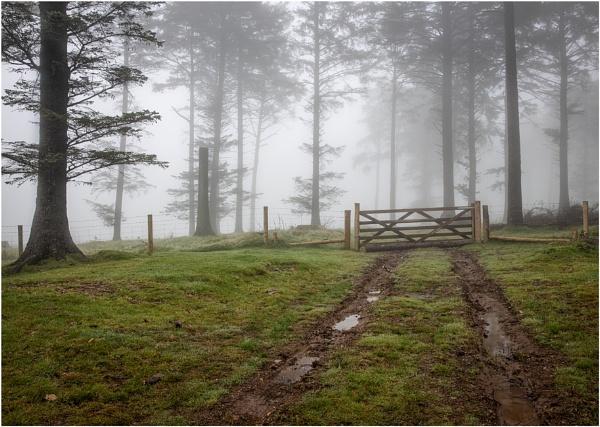 Please Shut the Gate by Snaphappyannie