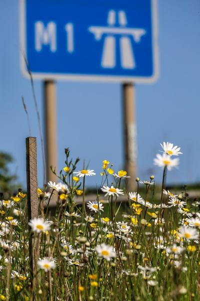 Roadside by mark2uk