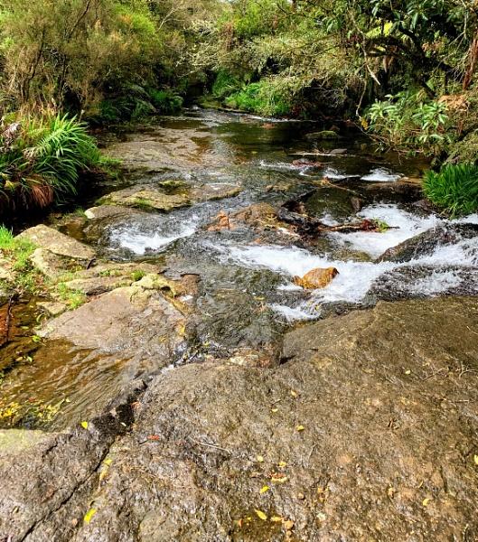 Creek by markymook