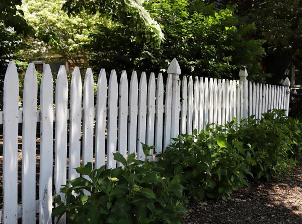 Fenced by Merlin_k