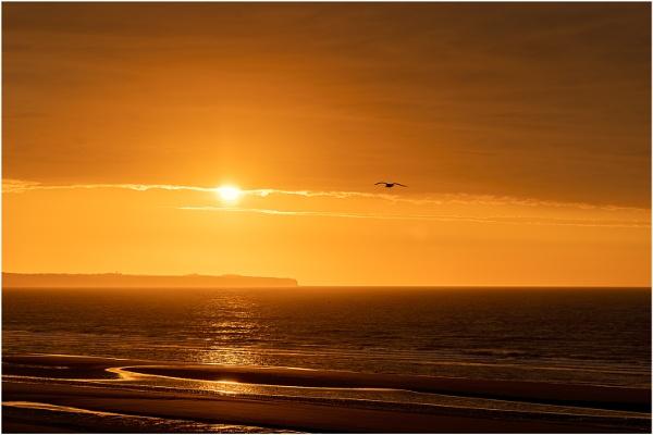 Sunrise at Bempton by Lillian