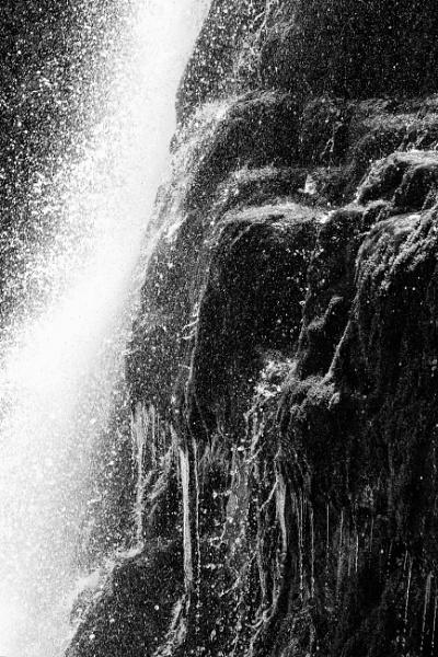 Water Majestic by mlseawell