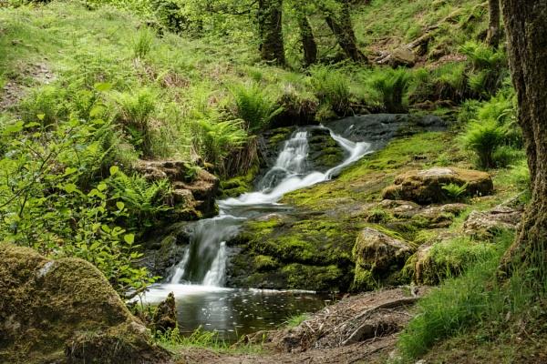 Venford Brook Dartmoor by topsyrm