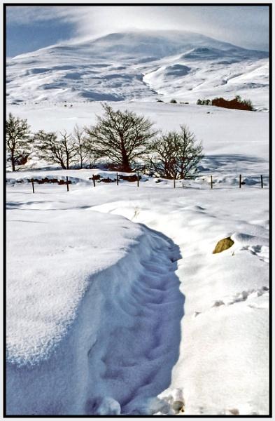 Schiehallion in Winter by mac