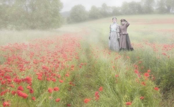 A Wander in the Poppy Fields by HelenaJ