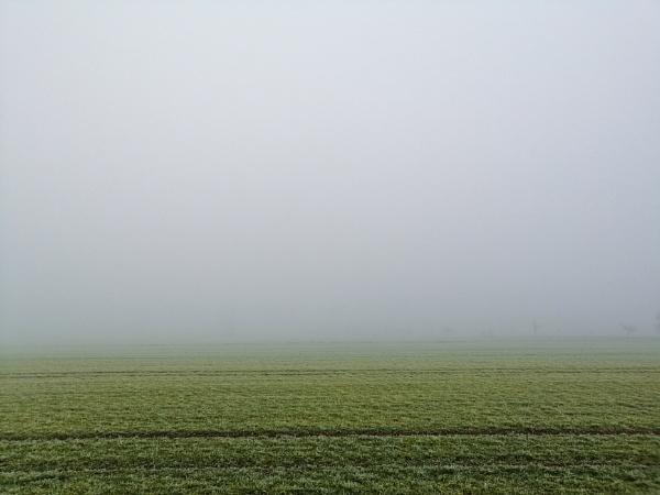 fog by BelloBaer