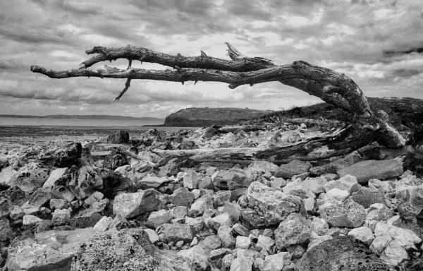 North Somerset Coast by rjpring