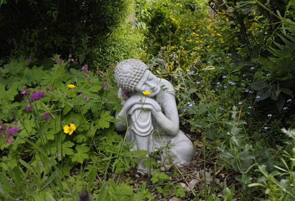 Sleeping Buddha in  wild flowers by robertsnikon