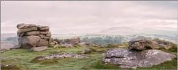 Misty Morning - Dartmoor