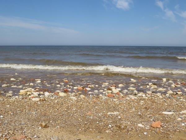 The Beach by Samantha011208