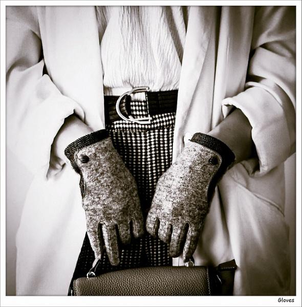 Gloves by Robert51