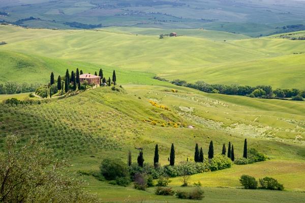 PIENZA, TUSCANY/ITALY - MAY 20 : Farmland near Pienza in Tuscany by Phil_Bird