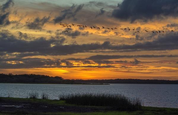 Sunset flyover by jbsaladino