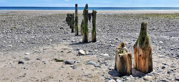Murlough Beach, County Down by wisk