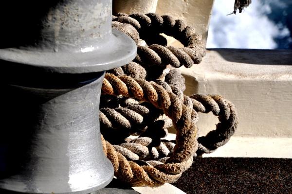 "\""Boatabilia\"" ropes... by Chinga"
