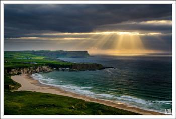 """""""Sunbeams at the Bay"""""""