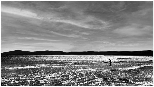 Moray Firth by mac