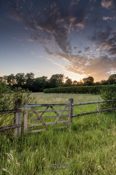 Cloud, Grass and gate by IainHamer