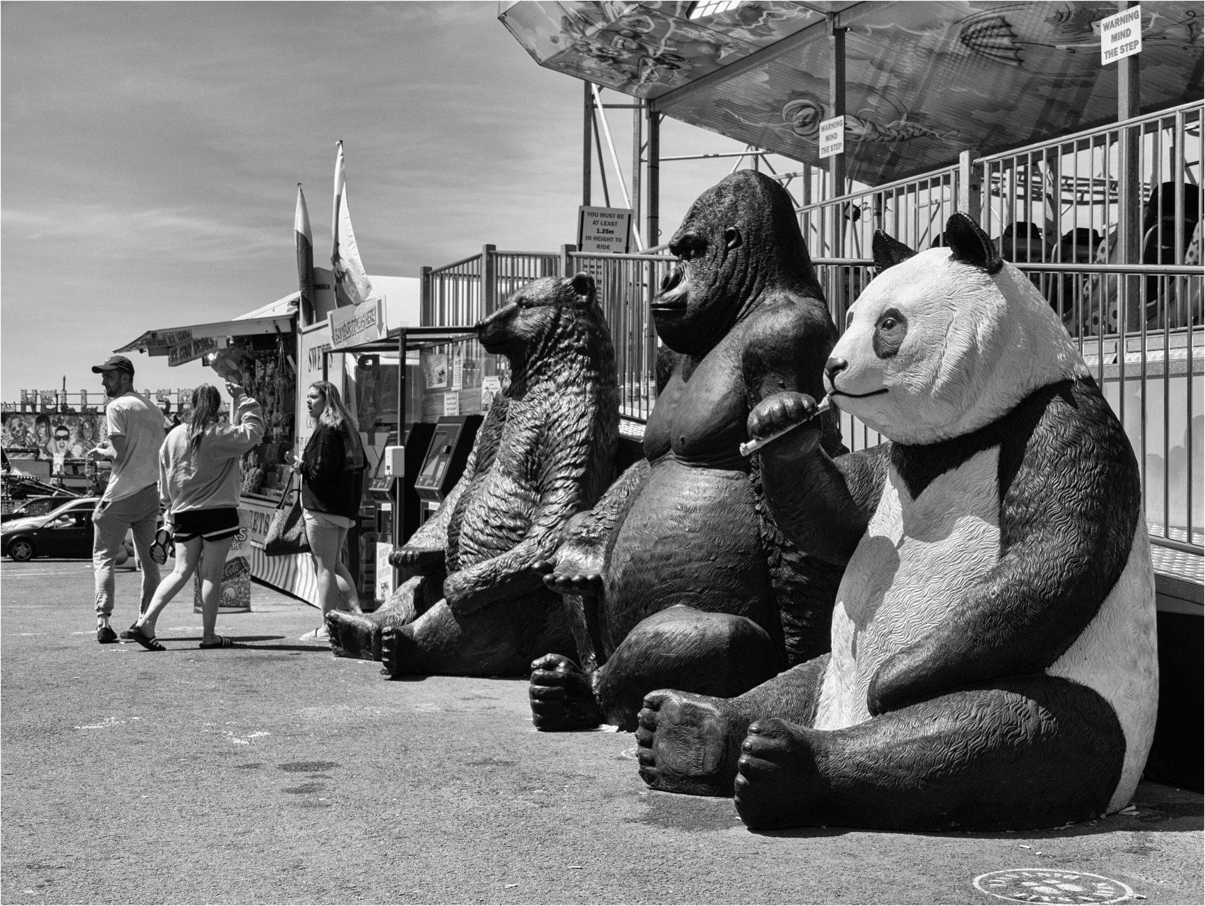 A queue at the amusement park.