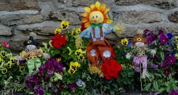 Mini Scarecrows in Garden
