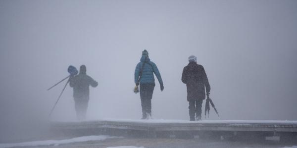 Blizzard by rontear