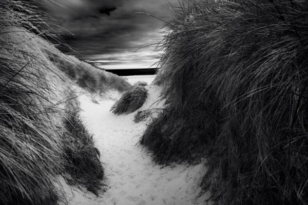 Dunes by bobbyl