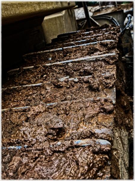 Muddy tracks by jacomes