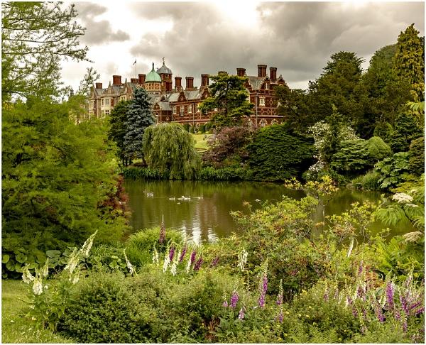 Sandringham Estate by Janetdinah