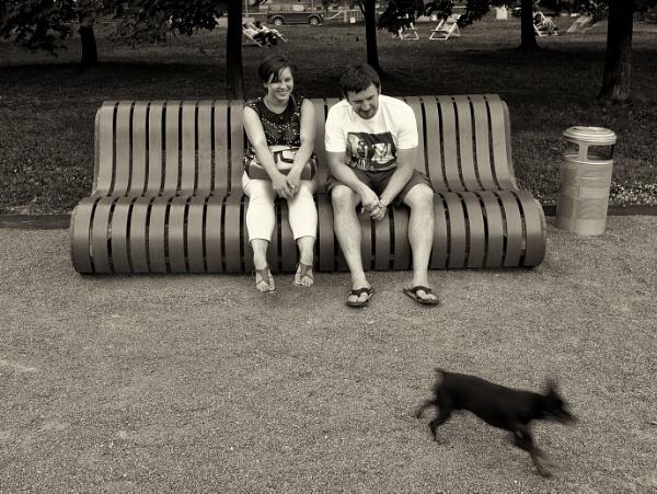 run doggo run by leo_nid