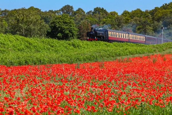 Severn Valley Railway by Just_Liz