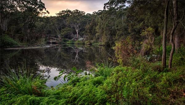 River Scene by tvhoward950