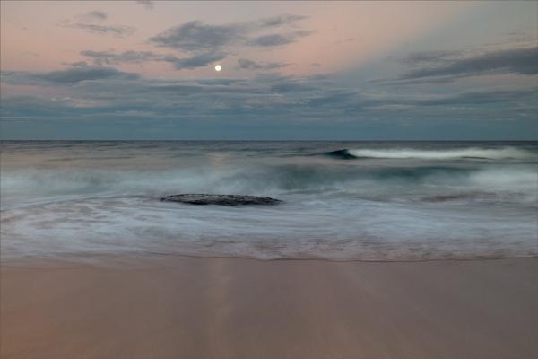 Orca Moon by tvhoward950